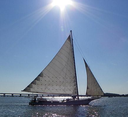 Cambridge_Skipjack_Races_09-2013_CyndyMiller_17-SM