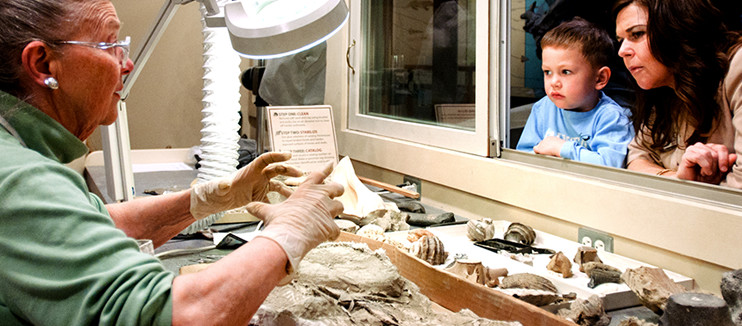 Kid Looking at Fossils
