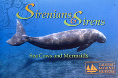 Sirens_and_Sirinians
